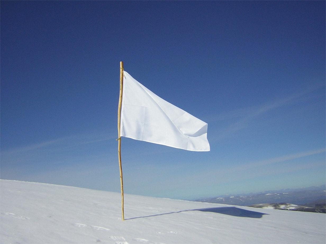 Ha volna zászlód, mit írnál rá?