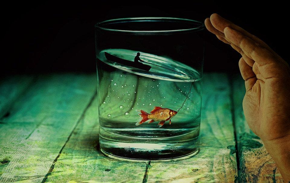 Tökéletlenbe vágj bele, és a jón is változtass!